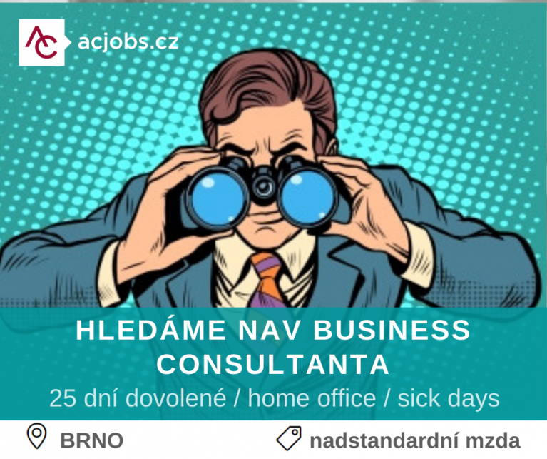 NAV BUSINESS CONSULTANT